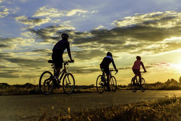 fietsroutes veluwe nederland